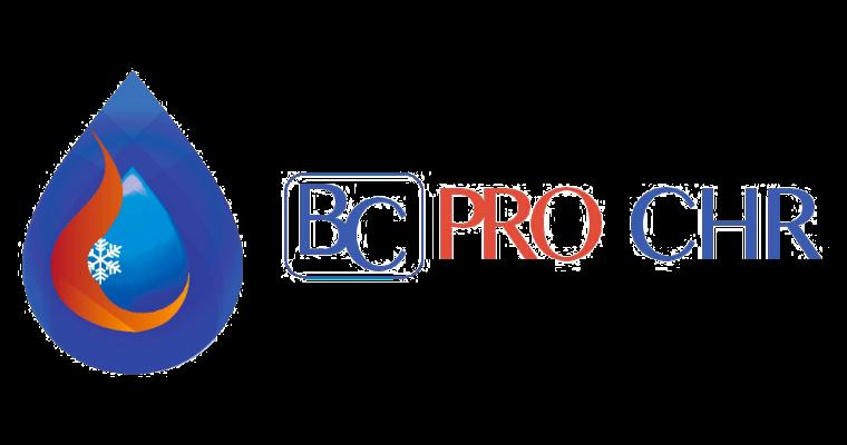 Logo-BCPRO-380×200@2x